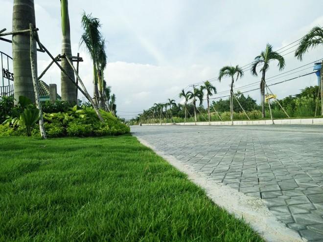 Khu Nam Sài Gòn đang thu hút nhà đầu tư.