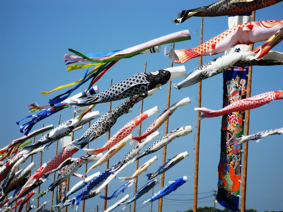 """Chủ đầu tư Nam Long tổ chức sự kiện """" Cánh đồng cá Koi"""" tại Khu nhà mẫu dự án Flora Mizuki Park Nam Long Bình Chánh"""