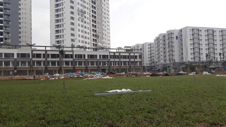 Chủ đầu tư Nam Long đang tiến hành trồng cỏ khu vực trường học trước dự án Mizuki Park